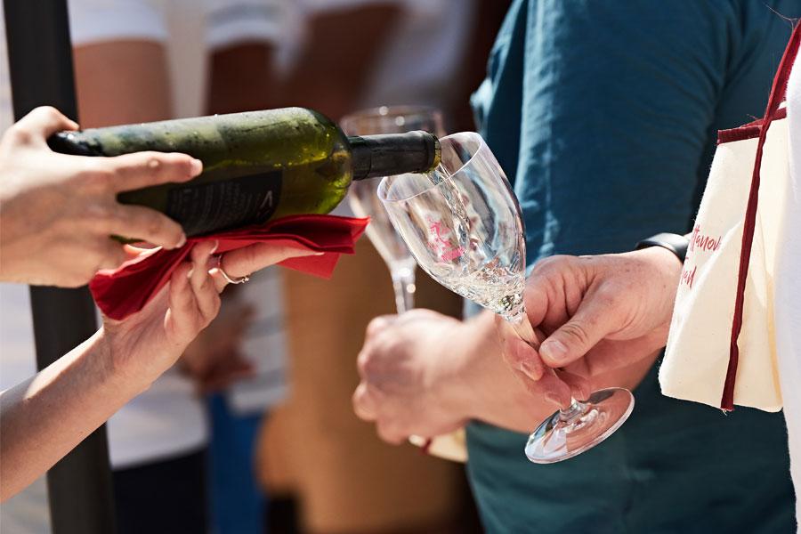Wine Tasting Novigrad Istria